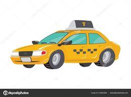 Autista driver disponibilità H 24